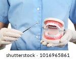 female hands holding teeth... | Shutterstock . vector #1016965861