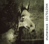 Horse Skull. Spooky Horror...