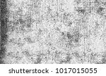 black and white texture of... | Shutterstock . vector #1017015055