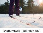 human legs in active winterwear ... | Shutterstock . vector #1017024439