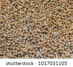 tamarind fruit for at a local...   Shutterstock . vector #1017031105
