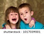 portrait of adorable brother... | Shutterstock . vector #1017039001