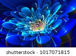 abstraction  flowers  best... | Shutterstock . vector #1017071815