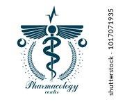 pharmacy caduceus vector icon ... | Shutterstock .eps vector #1017071935