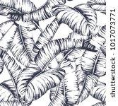 seamless banana leaves pattern... | Shutterstock .eps vector #1017073771