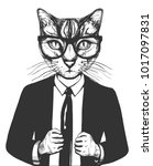 vector illustration of a cat in ... | Shutterstock .eps vector #1017097831