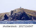 monument at cape horn. with... | Shutterstock . vector #1017116347