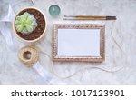 vintage mockup. succulent plant ... | Shutterstock . vector #1017123901
