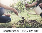 young couple planting the tree... | Shutterstock . vector #1017124489