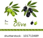 green and black olives in one... | Shutterstock .eps vector #101713489