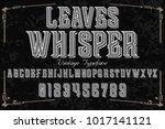 vintage font typeface... | Shutterstock .eps vector #1017141121