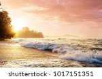 beautiful tropical pacific... | Shutterstock . vector #1017151351