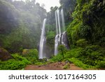 hidden in jungles beautiful... | Shutterstock . vector #1017164305