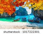landscape of natural sea beach... | Shutterstock . vector #1017222301