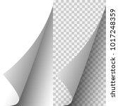 vector white realistic paper... | Shutterstock .eps vector #1017248359