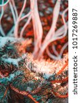 chritmas in ny | Shutterstock . vector #1017269887