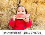 asian kid eating watermelon... | Shutterstock . vector #1017278701