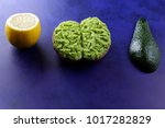 avocado and lemon and... | Shutterstock . vector #1017282829