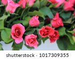 pink roses in flowers bouquet. | Shutterstock . vector #1017309355