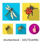 arthropods insect ladybird ...   Shutterstock .eps vector #1017316981