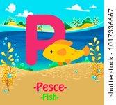 fresh design cute animal vector ... | Shutterstock .eps vector #1017336667