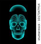 skull open x ray with brain... | Shutterstock .eps vector #1017347914