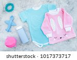 baby clothes concept. blue... | Shutterstock . vector #1017373717