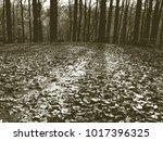 copy of old lithographic... | Shutterstock . vector #1017396325