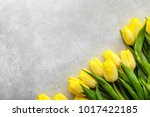 yellow tulips  spring easter... | Shutterstock . vector #1017422185