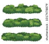 natural bush vector | Shutterstock .eps vector #1017478879