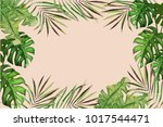 exotic tropical palm tree.... | Shutterstock .eps vector #1017544471