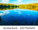 beautiful view colors nature... | Shutterstock . vector #1017563635