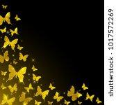 golden glitter butterflies on a ... | Shutterstock .eps vector #1017572269