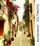 traditional street and houses... | Shutterstock . vector #1017586351