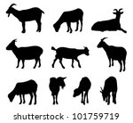 Collection Of Vector Goat...