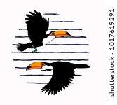 vector illustration. toucans on ... | Shutterstock .eps vector #1017619291