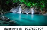 jungle landscape with flowing... | Shutterstock . vector #1017637609