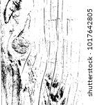 texture for grungy effect ....   Shutterstock .eps vector #1017642805