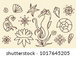sea horse  shells and doodle... | Shutterstock .eps vector #1017645205