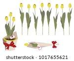 spring flower gift clip art....   Shutterstock .eps vector #1017655621