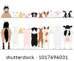 standing farm animals front and ... | Shutterstock .eps vector #1017696031