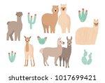 cute lama  alpaca and cactuses... | Shutterstock . vector #1017699421