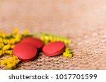 medicine herb. herbal pills... | Shutterstock . vector #1017701599