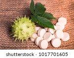 medicine herb. herbal pills... | Shutterstock . vector #1017701605