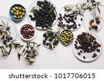 collection olive tree hedge... | Shutterstock . vector #1017706015