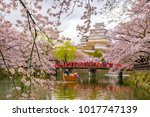 himeji castle with sakura... | Shutterstock . vector #1017747139