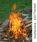 Small photo of Campfire with burning logs and wood waste - light and heat source alike