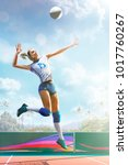 professional female volleyball...   Shutterstock . vector #1017760267