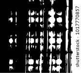 black and white grunge vector... | Shutterstock .eps vector #1017770857