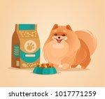 happy smiling pomeranian spitz... | Shutterstock .eps vector #1017771259